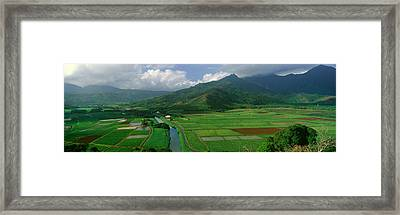 Fields Of Taro, Hanalei Valley Framed Print by Panoramic Images