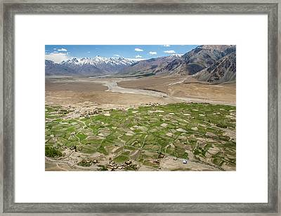 Fields Of Zangla, Zanskar, 2008 Framed Print by Hitendra SINKAR