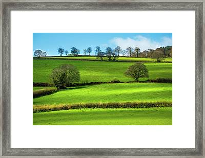 Fields Framed Print by Svetlana Sewell