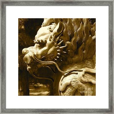Fierce Framed Print by Carol Groenen
