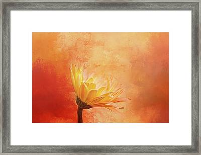 Fiery Beauty Framed Print