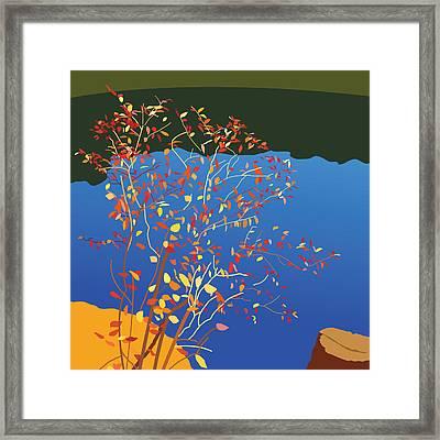 Fiery Bush Framed Print by Marian Federspiel