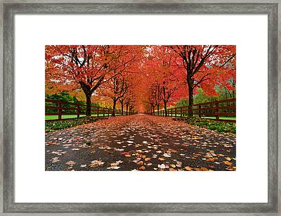 Fiery Framed Print by Dan Mihai