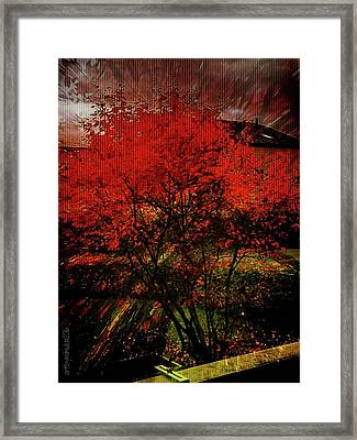 Framed Print featuring the photograph Fiery Dance by Mimulux patricia no No