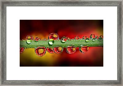 Fiery Drops 16x9 Framed Print
