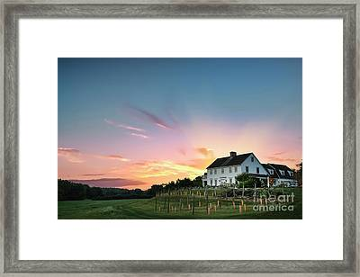Fiery Embrace Framed Print by Evelina Kremsdorf