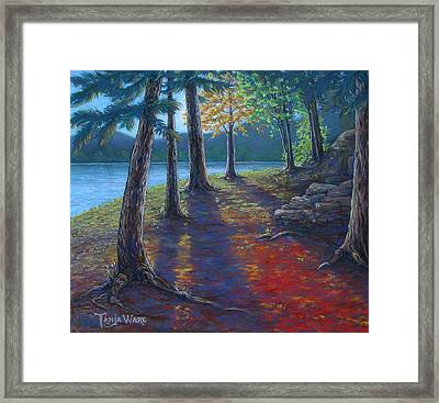 Fiery Fall Afternoon Framed Print by Tanja Ware