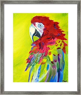 Fiery Feathers Framed Print