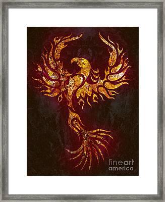 Fiery Phoenix Framed Print by Robert Ball