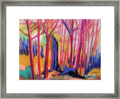 Fiery Sunrise Framed Print by John Williams