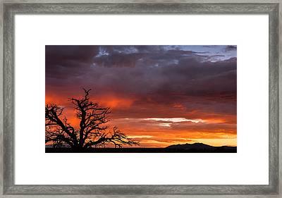 Fiery Sunset Framed Print by Elena E Giorgi