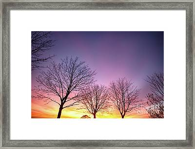 Fiery Winter Sunset With Bare Trees Framed Print by Simon Bratt Photography LRPS