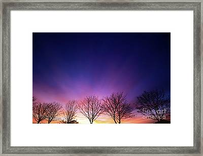 Fiery Winter Sunset With Line Of Bare Trees Framed Print by Simon Bratt Photography LRPS