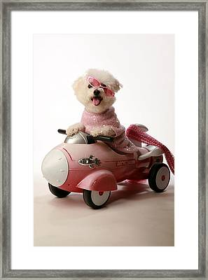 Fifi Experiances A Rough Landing In Her Rocket Car Framed Print by Michael Ledray