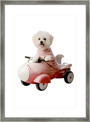 Fifi Is Ready For Blas Off Framed Print by Michael Ledray