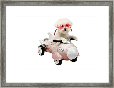 Fifi Loves Her Rocket Car Framed Print