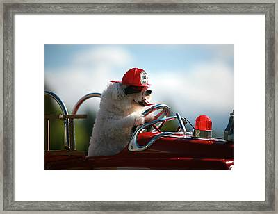 Fifi Saves The Day Framed Print by Michael Ledray