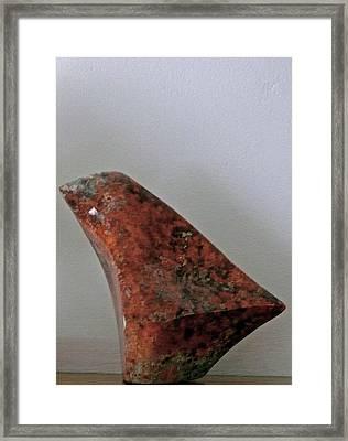Fifth Chakra Humming Bird Framed Print by Frank Pasquill