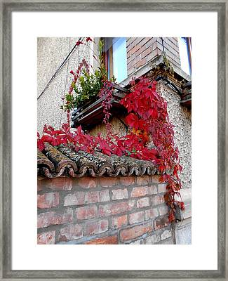 Fifty Shades Of Autumn - 12. Framed Print