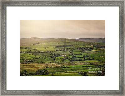 Fifty Shades Of Green Framed Print