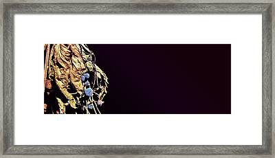 Framed Print featuring the photograph fig by Artistic Panda