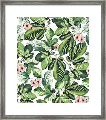 Fig Garden Framed Print