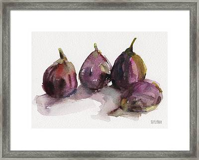 Fig Season Framed Print by Beverly Brown