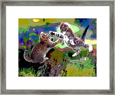 Fighting Cats Framed Print