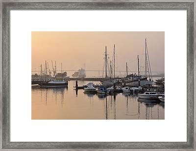 Misty Marina Framed Print