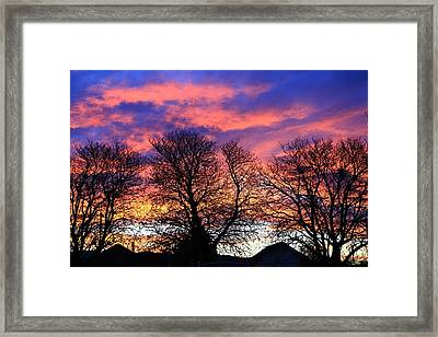 Framed Print featuring the painting Filigree Sunset by Nareeta Martin