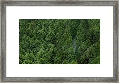 Fill Up Framed Print