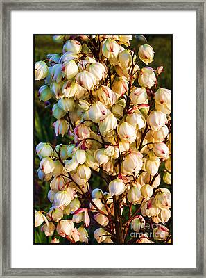 Filled With Joy Floral Bunch Framed Print