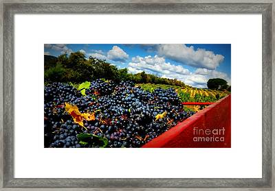Filling The Red Wagon Framed Print by Lainie Wrightson