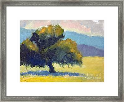Filoli Oak Framed Print