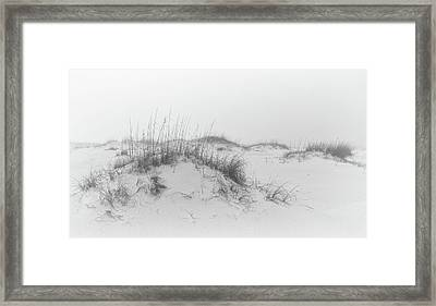 Filtered By Fog Framed Print by Bill Chambers