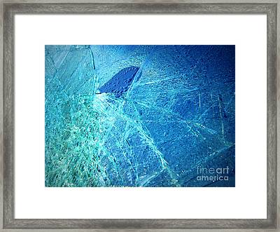 Framed Print featuring the photograph Fin  by Kristine Nora
