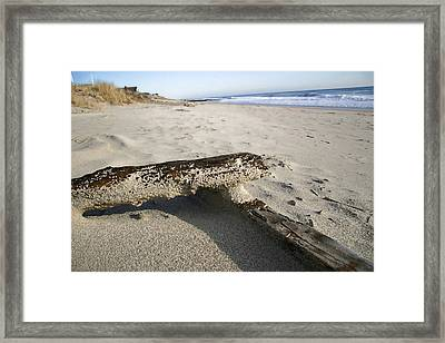 Final Drift Framed Print by Mary Haber