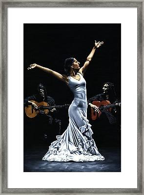 Finale Del Funcionamiento Del Flamenco Framed Print by Richard Young