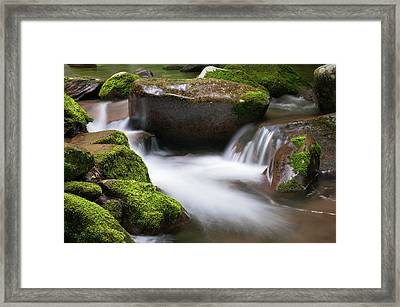 Framed Print featuring the photograph Find Your Path  by Expressive Landscapes Fine Art Photography by Thom