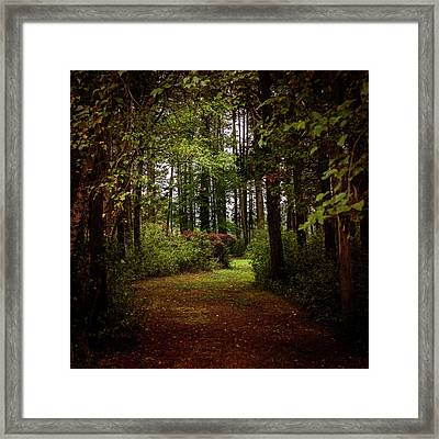 Find Your Path Square Framed Print