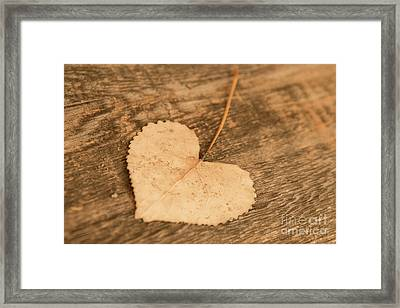 Framed Print featuring the photograph Finding Hearts by Ana V Ramirez