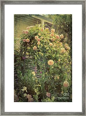 Finding Our Way Framed Print