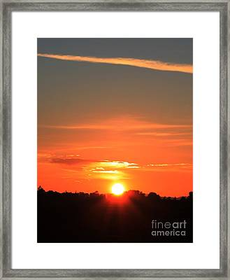 Framed Print featuring the photograph Finding The Horizon by Erica Hanel