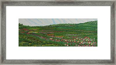 Finding The Way To You - Spring In Emmental Framed Print