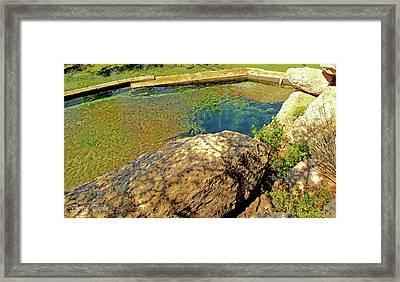 Fine Art America Pic 121 Jacobs Well Close Up Framed Print by Darrell Taylor