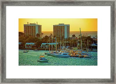 Fine Art America Pic 153 Framed Print by Darrell Taylor