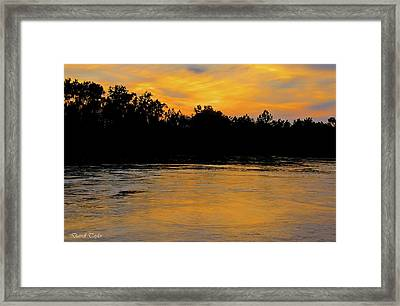 Fine Art America Pic 167 Only In Texas Framed Print by Darrell Taylor