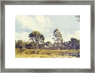 Fine Art Australia Landscape. Retro Tasmania Field Framed Print