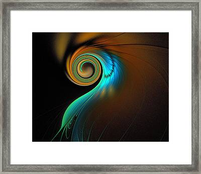 Fine Feathers Framed Print