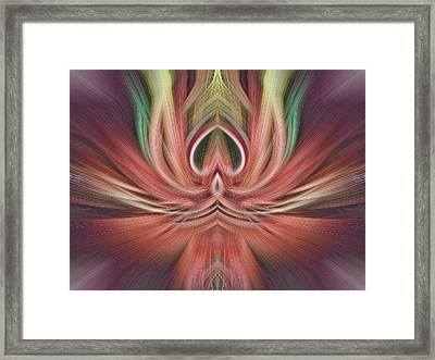 Fine Line Adstract Framed Print by Linda Phelps